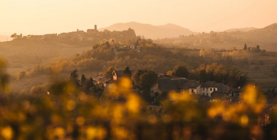 Let's Discover Monferrato, A Mosaic Of Wines And Landscapes